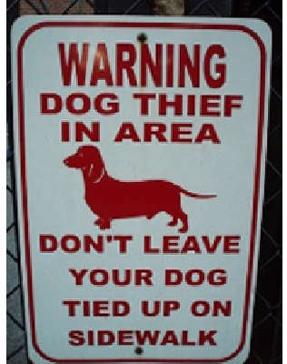 Warning: Dog Thief in Area